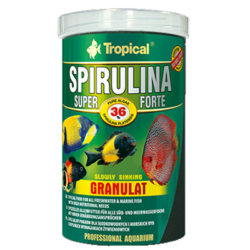 tropical_spirulina