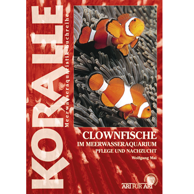 Art für Art - Clownfische - Fish-Point Uetendorf