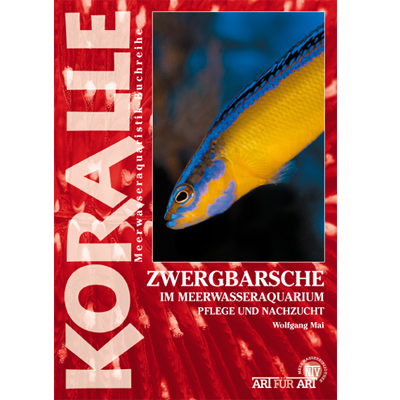 Art für Art - Zwergbarsche - Fish-Point Uetendorf